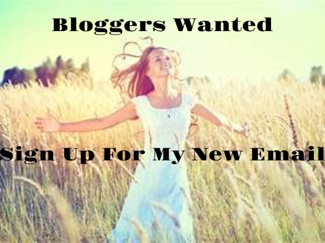 Are you interested in being added to my bloggers wanted email?